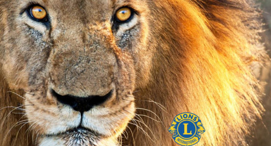 Normanton Lions Club